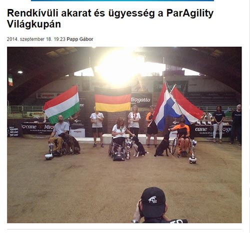 paragility_beol_cikk_2014