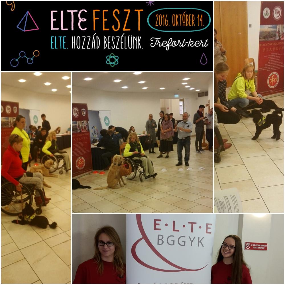 eltefest2016