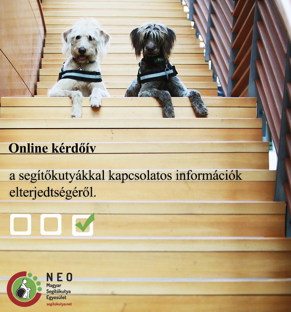 kerdoiv_20161101